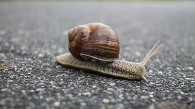 The Slow Progression of Sin